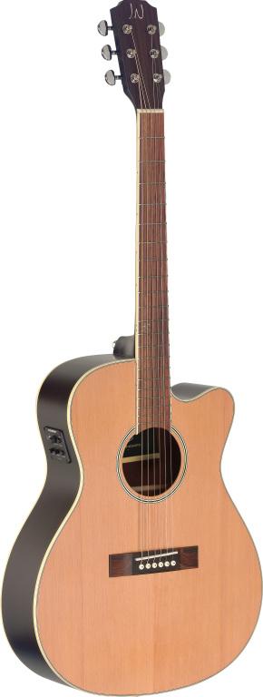 Fotografie James Neligan EZR-OMCFI NBK, Elektroakustická kytara