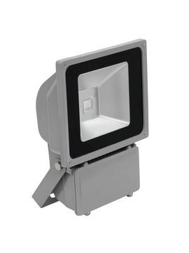 Eurolite LED IP FL-80 COB RGB 120° s dálkovým ovladačem, stříbrný
