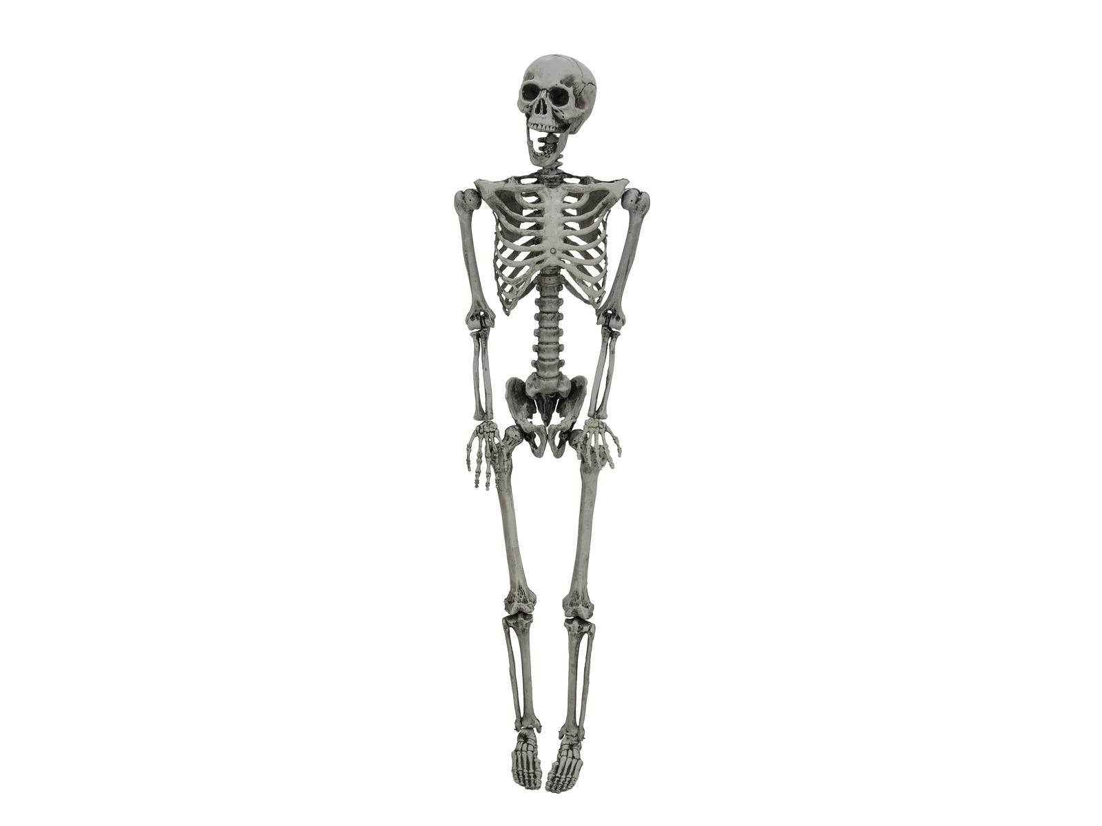 Halloween kostlivec na zavěšení, 160cm