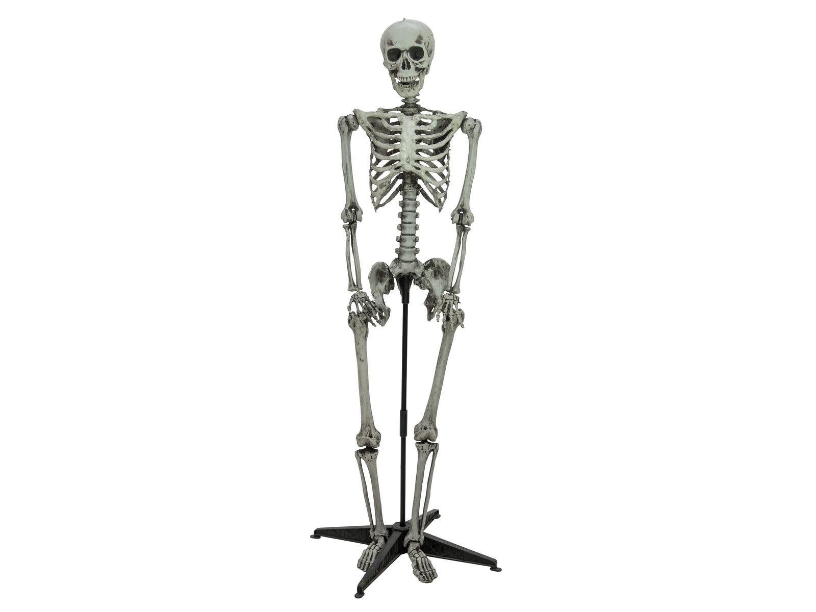 Halloween kostlivec stojící, 160cm